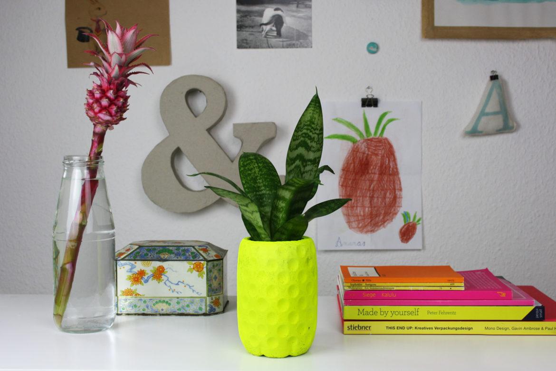 Hallo Piepmatz! Beton DIY Ananas Blumentopf
