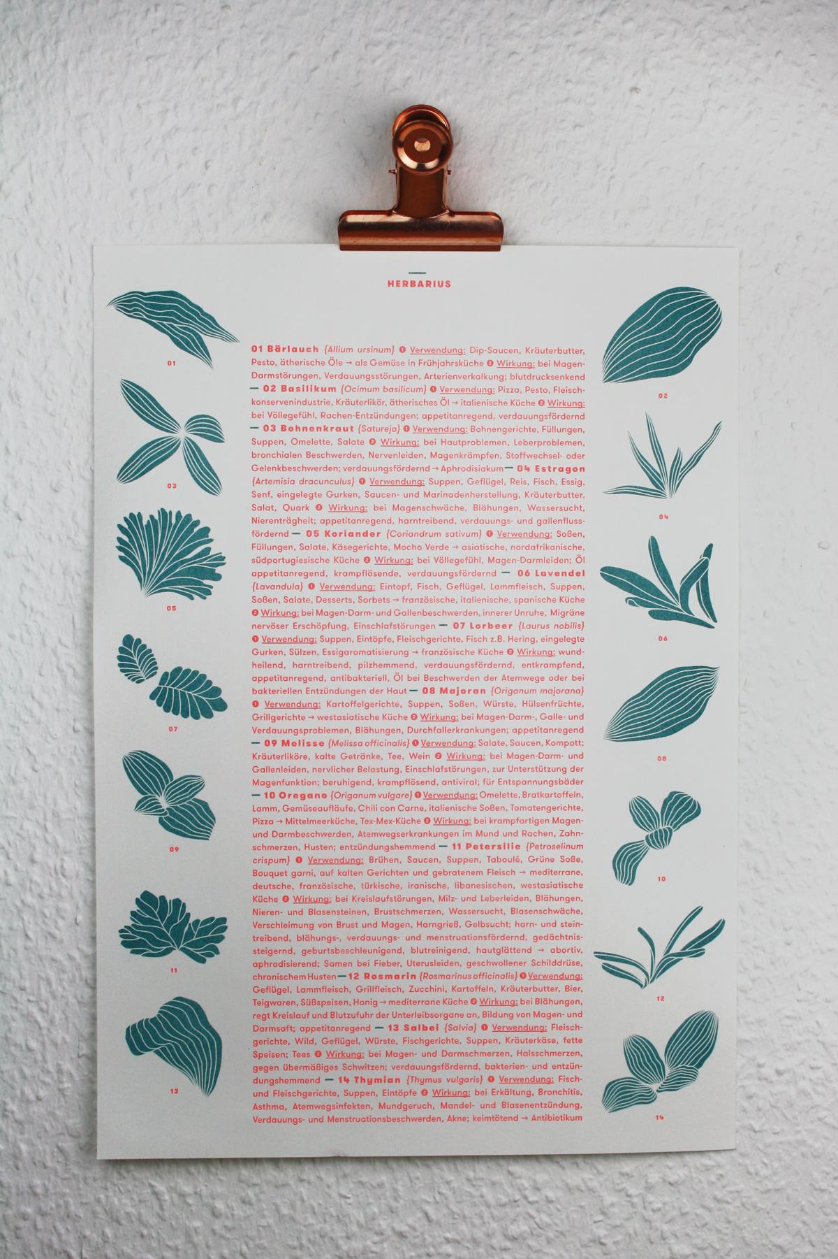 poster_plakat_kraeuter_riso_druck_herbs_design_kathleen_gust1